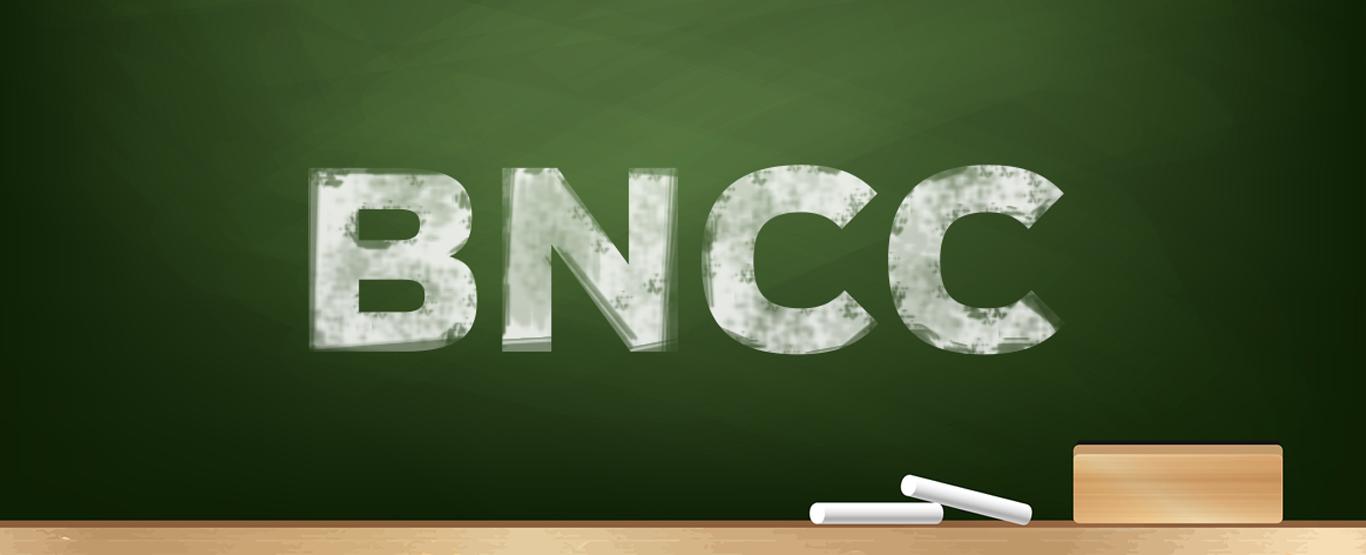 Quais os impactos da BNCC sobre o ensino?